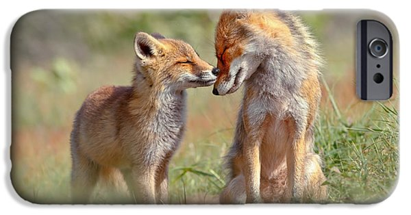 Fox Felicity - Mother And Fox Kit Showing Love And Affection IPhone 6s Case by Roeselien Raimond