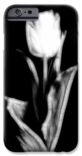 Fractal Tulip IPhone Case by Sebastian Musial