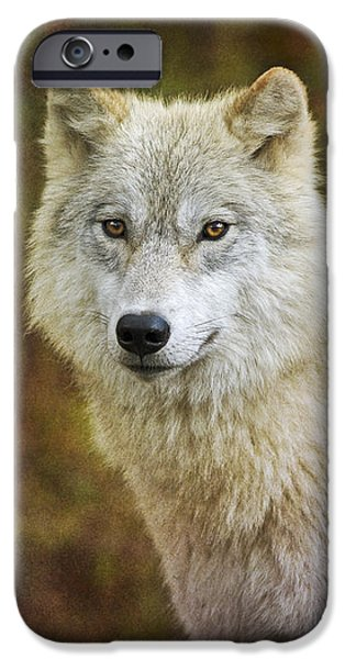 Friendly Beauty.. IPhone Case by Nina Stavlund