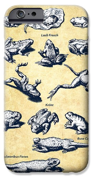 Frogs - Historiae Naturalis - 1657 - Vintage IPhone Case by Aged Pixel