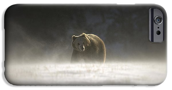 Blizzard Bear IPhone Case by Wildlife Fine Art