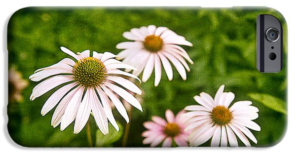 Garden Dasies IPhone Case by Tom Mc Nemar
