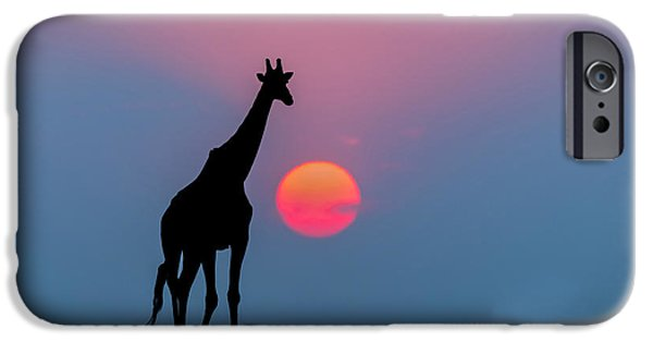 Giraffe At Sunset Chobe Np Botswana IPhone 6s Case by Andrew Schoeman