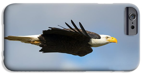 Glide IPhone Case by Mike Dawson