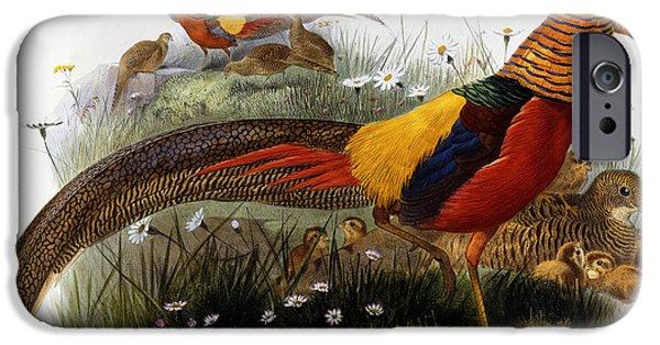 Golden Pheasants IPhone 6s Case by Joseph Wolf