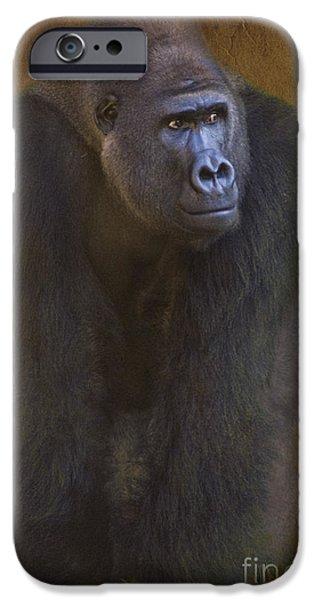 Gorilla The Muscleman IPhone Case by Heiko Koehrer-Wagner