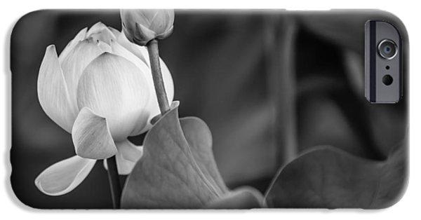 Graceful Lotus. Balck And White. Pamplemousses Botanical Garden. Mauritius IPhone Case by Jenny Rainbow
