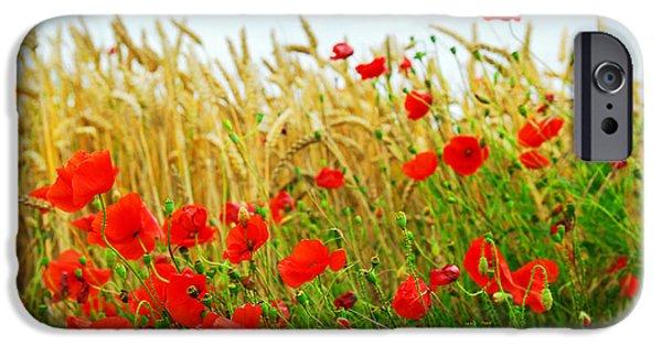 Grain And Poppy Field IPhone Case by Elena Elisseeva