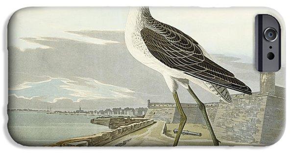 Greenshank IPhone Case by John James Audubon