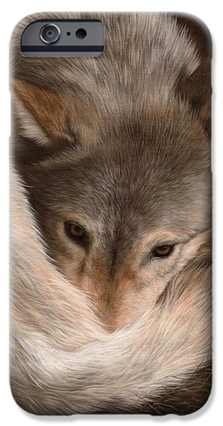 Grey Wolf Painting IPhone Case by Rachel Stribbling