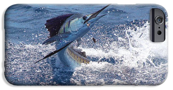 Guatemala Sailfish IPhone Case by Carey Chen