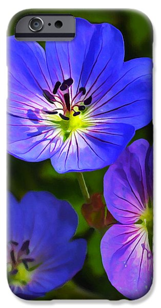 Happy Face IPhone Case by Bill Caldwell -        ABeautifulSky Photography