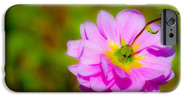 Happy Flower IPhone Case by Karol Livote