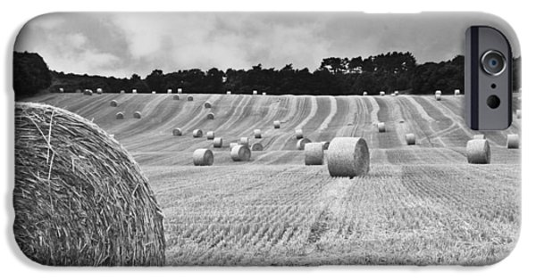 Harvest In Black And White IPhone Case by Georgia Fowler