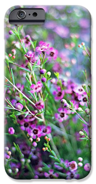 Heather IPhone Case by Jessica Jenney