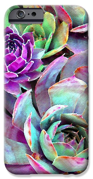 Hens And Chicks Series - Urban Rose IPhone Case by Moon Stumpp