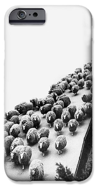 Hyde Park Sheep Flock IPhone 6s Case by Underwood Archives