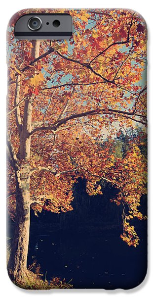 If Wishes Were Trees IPhone 6s Case by Laurie Search
