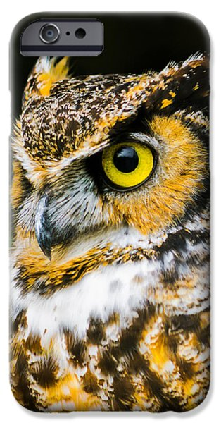 In The Eyes IPhone Case by Parker Cunningham