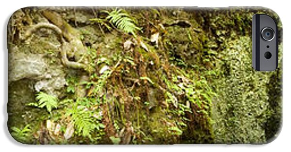 Inside A Sinkhole Panorama IPhone Case by Rich Leighton