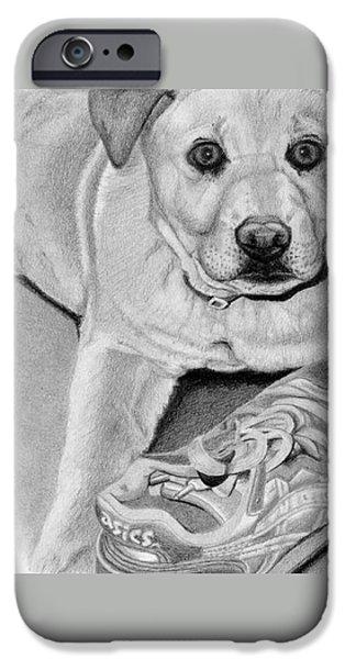 Sneaker Snatcher- Labrador And Chow Chowx Mix IPhone Case by Sarah Batalka