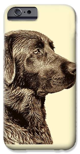 Labrador Retriever Dog In Sepia IPhone Case by Jennie Marie Schell