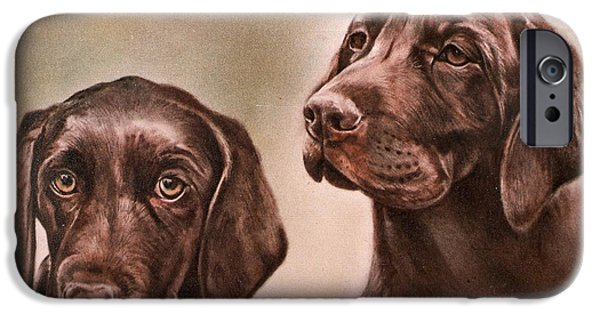 Labrador Retrievers IPhone Case by Gail Dolphin
