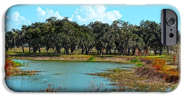 Lakeside In Sumter County IPhone Case by Mary Machare