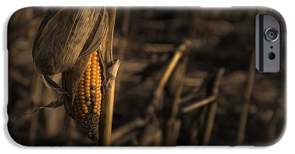 Last Year's Crop IPhone Case by Chris Fletcher