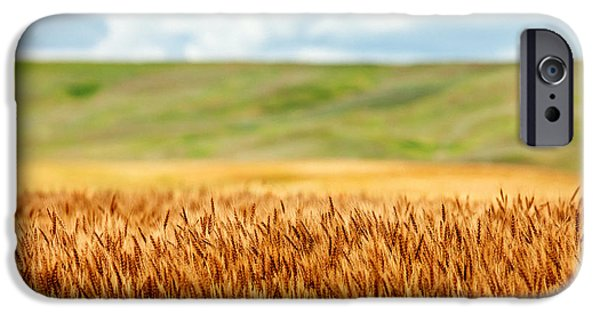 Layers Of Grain IPhone Case by Todd Klassy