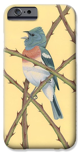 Lazuli Bunting IPhone 6s Case by Nathan Marcy