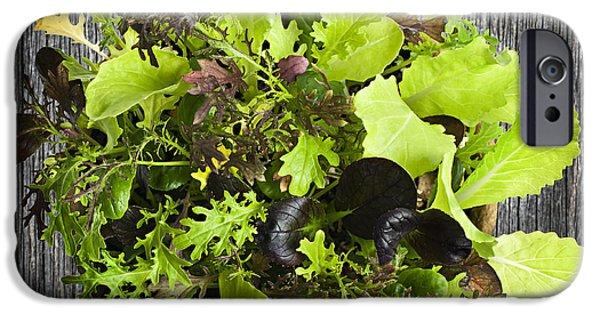 Lettuce Seedlings IPhone 6s Case by Elena Elisseeva