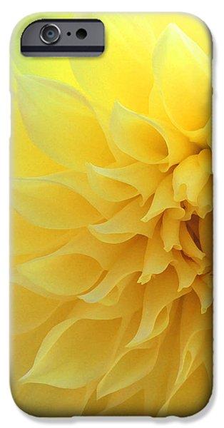 Light Of Faith IPhone Case by  The Art Of Marilyn Ridoutt-Greene