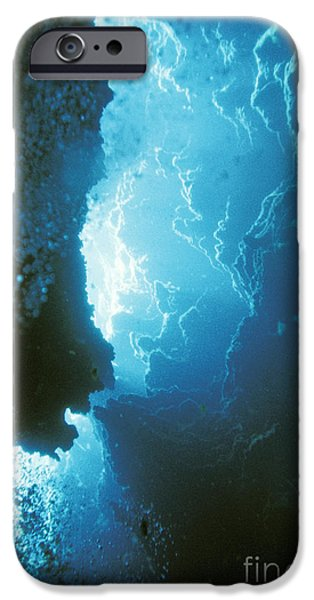 Limestone Sinkhole IPhone Case by ANT Photo Library