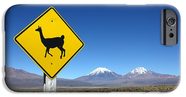 Llamas Crossing Sign IPhone 6s Case by James Brunker