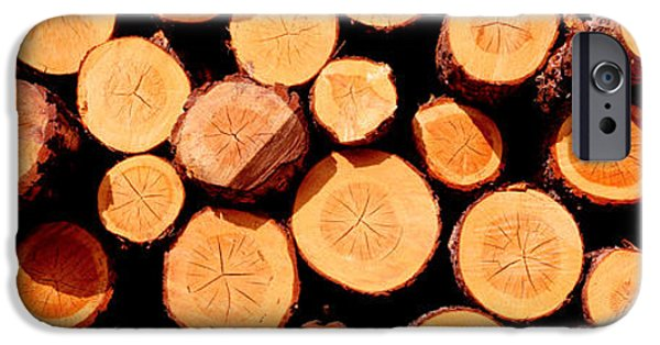 Logs IPhone Case by Panoramic Images