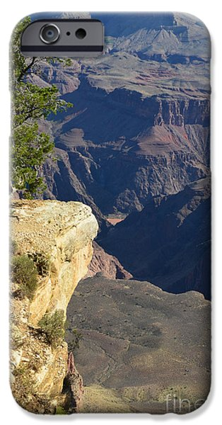 Lone Tree Overlooking Grand Canyon National Park Vertical IPhone Case by Shawn O'Brien