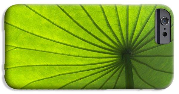 Lotus Leaf IPhone Case by Tim Gainey