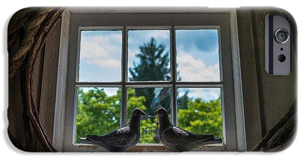 Love Birds IPhone Case by Kristopher Schoenleber