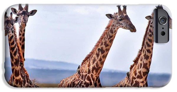 Masai Giraffe IPhone 6s Case by Adam Romanowicz