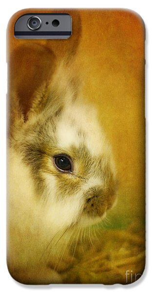 Memories Of Watership Down IPhone 6s Case by Lois Bryan