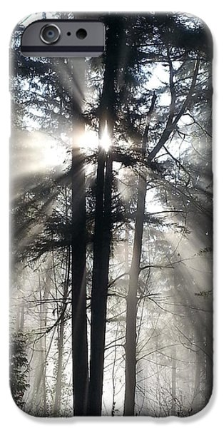Misty Morning Sunrise IPhone Case by Crista Forest