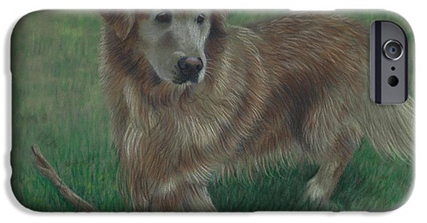 Molly And Her Stick IPhone Case by Debbie Stonebraker