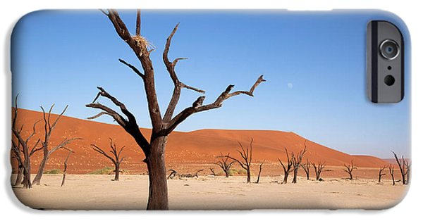 Moon And Tree With Nest, Dead Vlei IPhone Case by Jaynes Gallery
