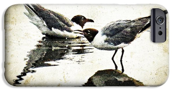 Morning Gulls - Seagull Art By Sharon Cummings IPhone Case by Sharon Cummings