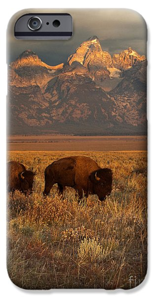 Morning Travels In Grand Teton IPhone Case by Sandra Bronstein