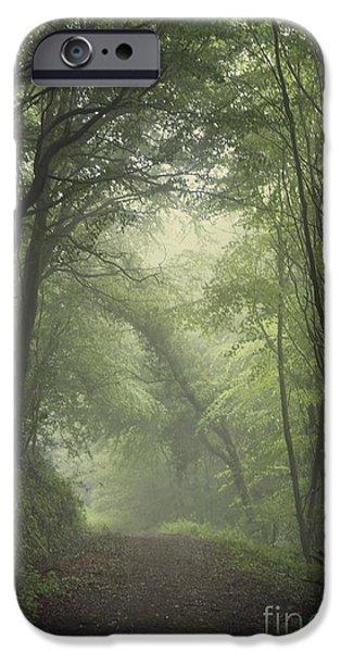 Mystery Awakens IPhone Case by Evelina Kremsdorf