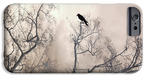 Nature Lone Crow In Trees - Surreal Fantasy Dreamy Trees Nature Raven Crow In Trees IPhone Case by Kathy Fornal