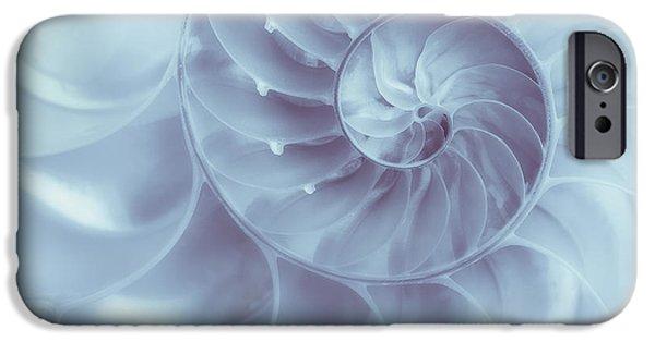 Nautilus - Dreaming Of The Sea IPhone Case by Tom Mc Nemar