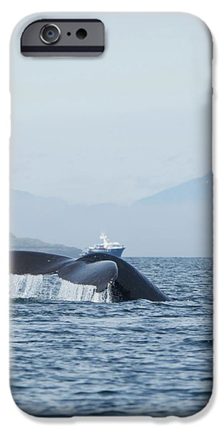 North America, Usa, Alaska IPhone Case by Joe and Mary Ann Mcdonald